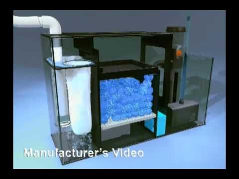Diy freshwater filtration sump tank youtube aquarium for Diy filter media