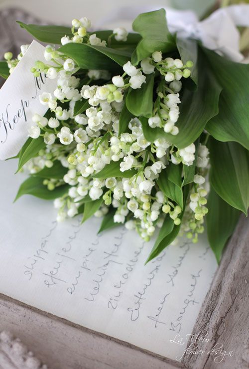 Nothing more beautiful than Lily of the Valley (from Slava Kroumova).
