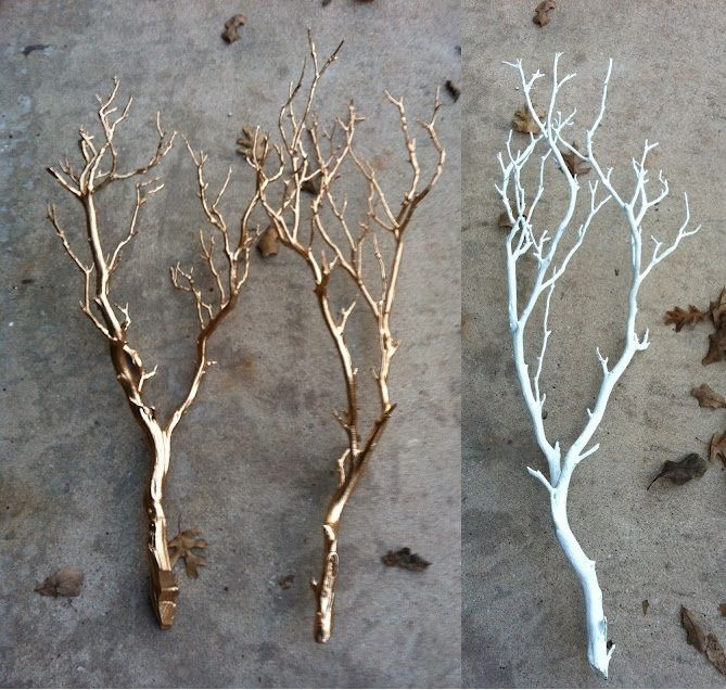 32 best images about narnia classroom theme on pinterest - White painted tree branches ...