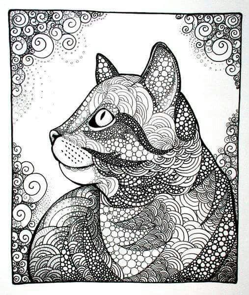 Cat, tabby cat, kitten, zentangle, doodle, illustration, cat drawing, drawing, black & white
