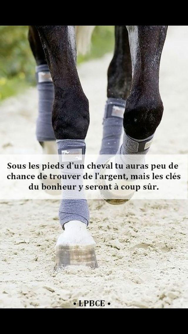 """""""Sous les pieds d'un cheval tu auras peu de chance de trouver de l'argent, mais les clés du bonheur y seront à coup sûr."""""""