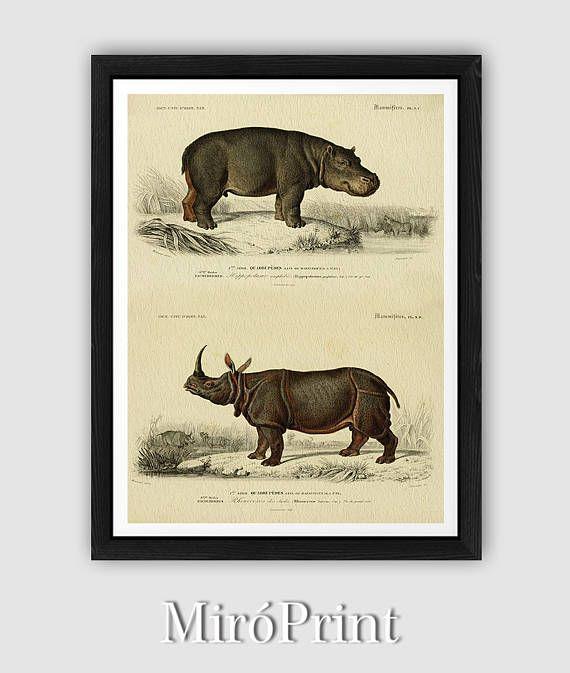 27 best Wants/Needs images on Pinterest   Framed art prints, Framed ...