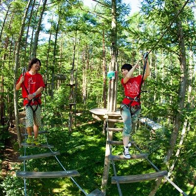 Altus: treetop and adventure park, ropes course construction
