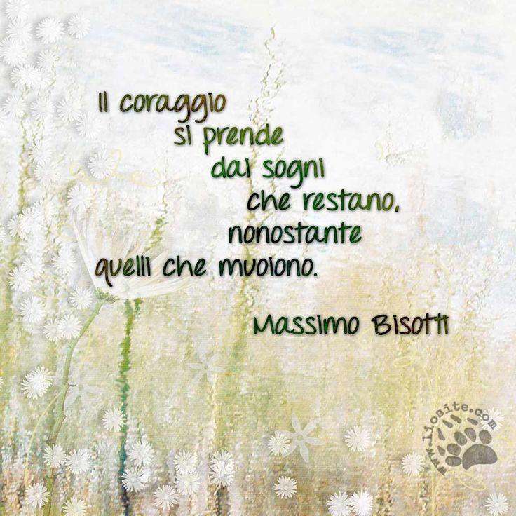 Massimo Bisotti - Il coraggio si prende ..