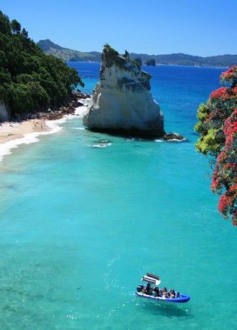 Cathedral Cove ~ Coromandel Peninsula, New Zealand