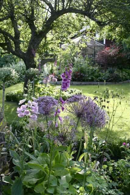 Beplanting maar ook vooral de sfeer, oudere orangerie /bij landhuis door opstaand randje en kas Trädgårdsflow