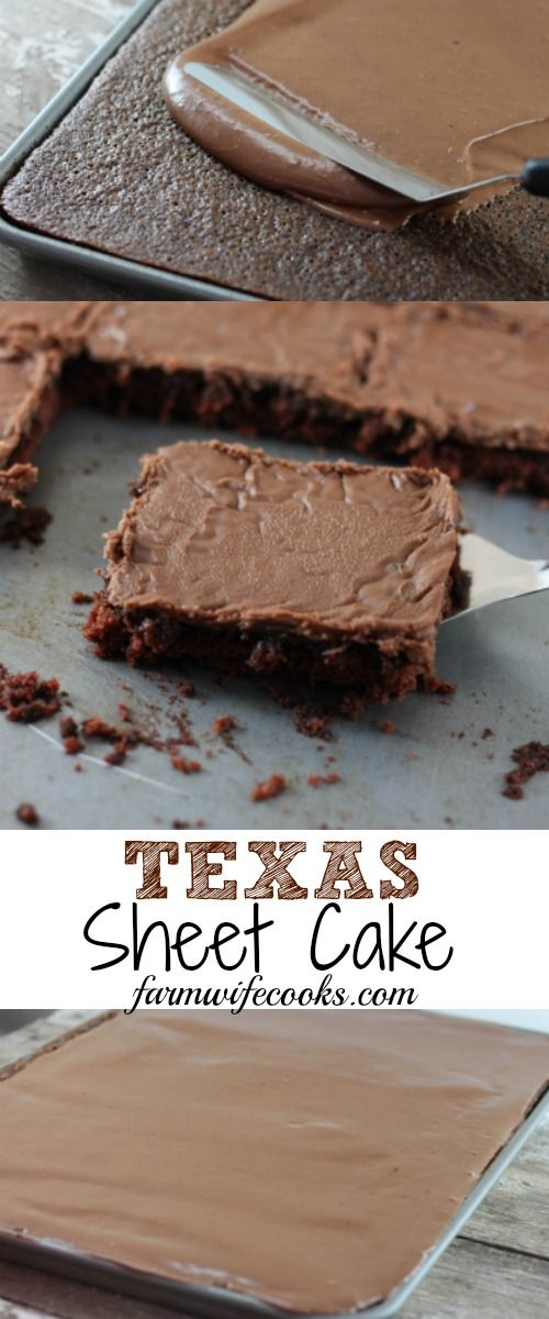 This Texas Sheet Cake is melt in your mouth good! An easy brownie like chocolate cake to feed a crowd.