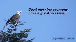 Good morning Eagle