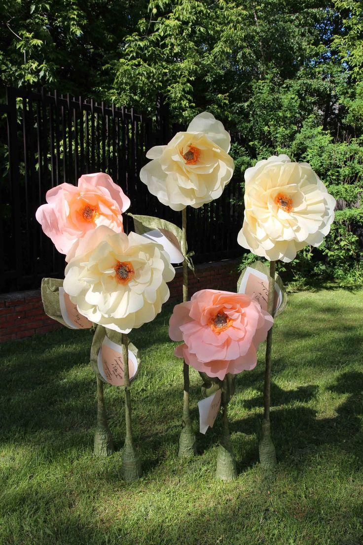 #PaperUp #bumagaup #бумажныецветы #экодекор  #paperflowers #paperdecor #giantpaperflowers