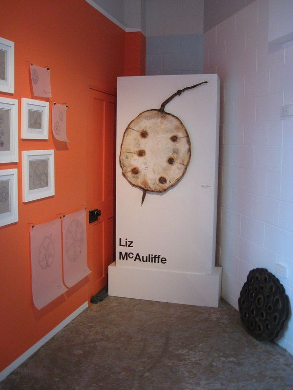Carved Honesty Pod in solo exhibition by New Zealand artist www.lizmcauliffe.com (also a carved lotus transverse section)