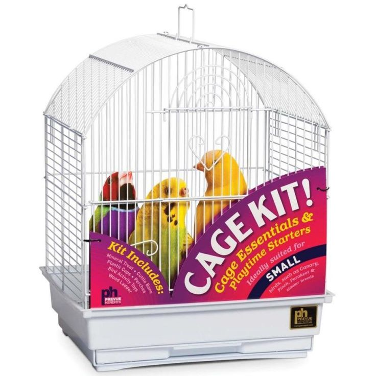Prevue Round Top Bird Cage Kit (With images) Parakeet