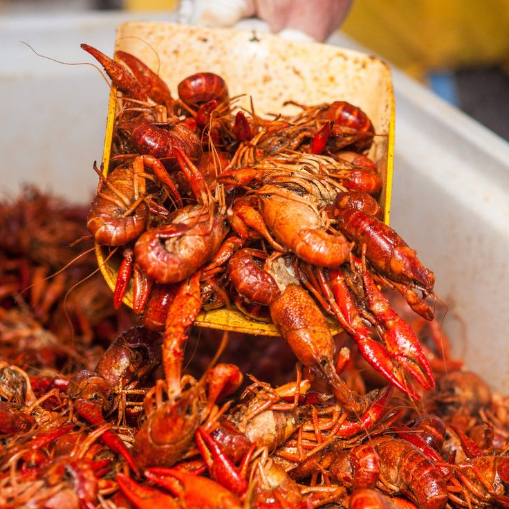 The 10 essential elements of a crawfish boilSmokkee Singleton