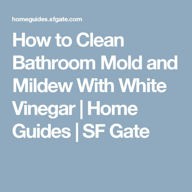 Best 25 Bathroom mold ideas on Pinterest  Cleaning