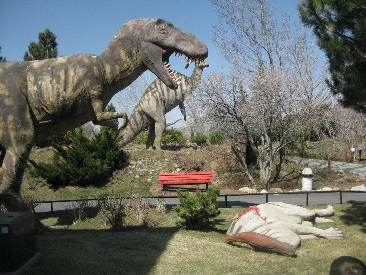 1000 Images About Zaden S Dinosaur Park Room On Pinterest