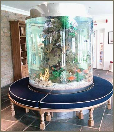 Aquarium Group - large circular acrylic fish tank clad top and bottom in stainless steel