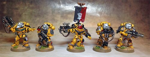 Pro Painted Imperial Fist Sternguard Space Marine Squad Games Workshop | eBay