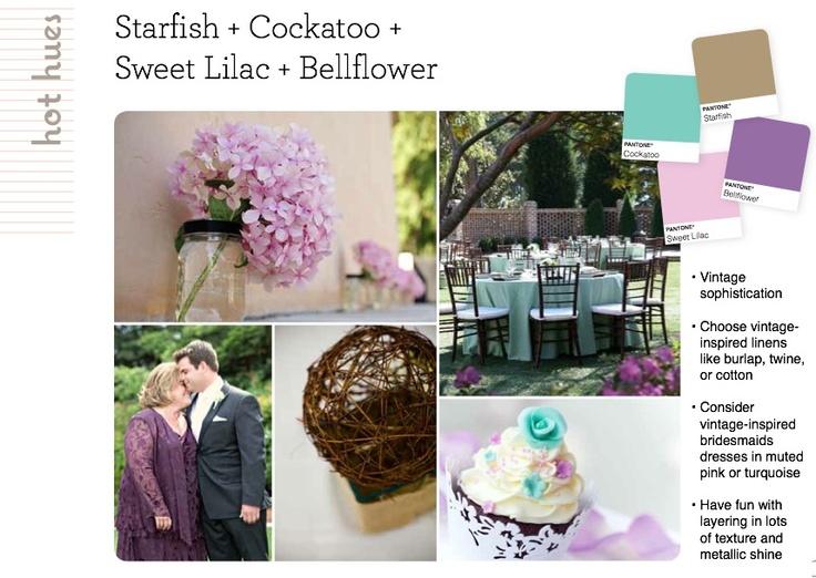 Starfish, Cockatoo, Sweet Lilac + Bellflower