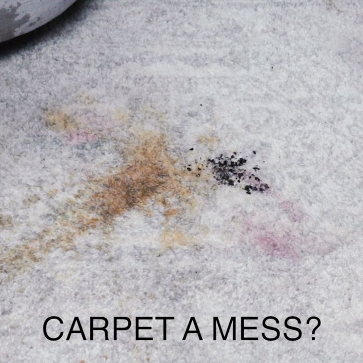 Here's How To Get Every Type Of Stain Out Of Carpet // #home #carpet #stains #cleaner #