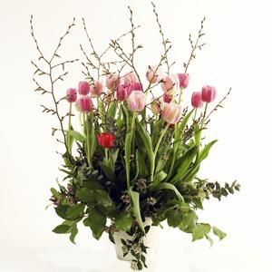 Este centro tiene tulipanes con durillo, sala y eucaliptus | Bourguignon Floristas