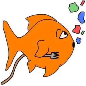 What do goldfish eat? Find out more about goldfish food...