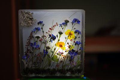 Suszone rośliny. Lanterns dried plants. Szklany lampion z suszonymi roślinami, wymiary 10 x 10 cm na tealight