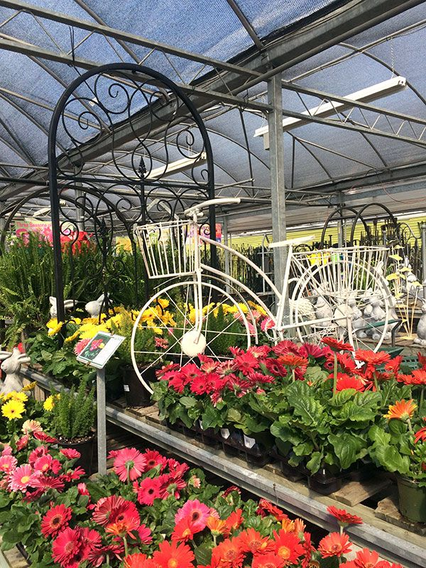 Plant Nursery And Garden Center Tips To