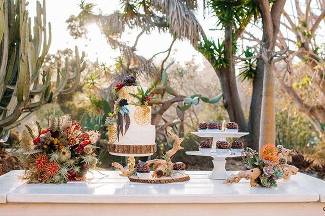 Desert Cactus Garden Inspiration