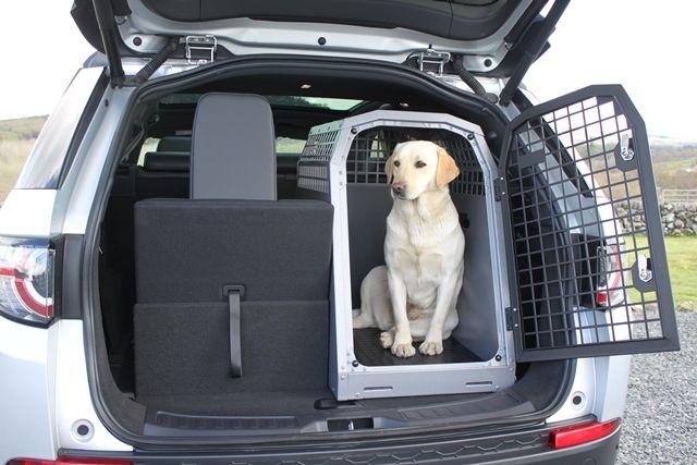 Best Dog Car Crates Uk