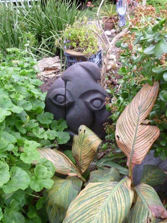 Lesley Barrett's garden and work.