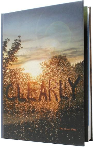 Love the clarity of the photo, the perspective (as if you are looking through a window with condensation), and the use of texture.