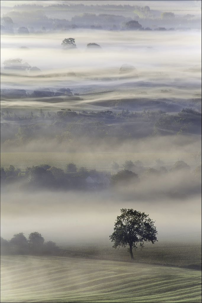Mists of Time (par Phil Selby)