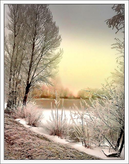 winter, Hilsenheim, Alsace, France.  Photo: Jean-Michel Priaux, via Flickr