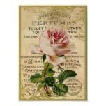 Het antiek Roze Parfum van Rozen Posters
