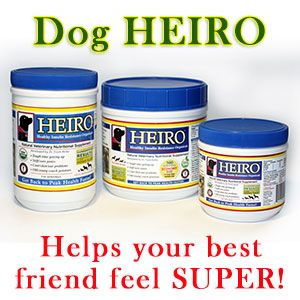 Best Dry Dog Food List – 15% of dog foods in the US qualify as High Protein, Low Carb - HEIRO for Dogs