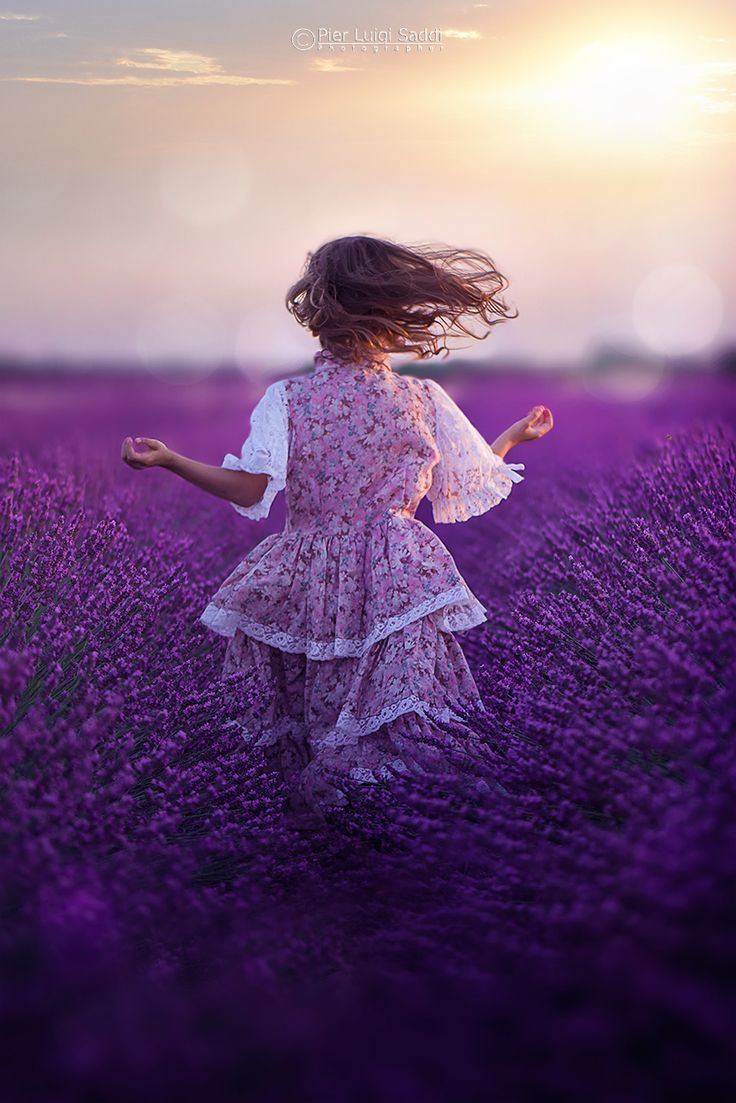 scents and colors of lavender by Pier Luigi Saddi on 500px