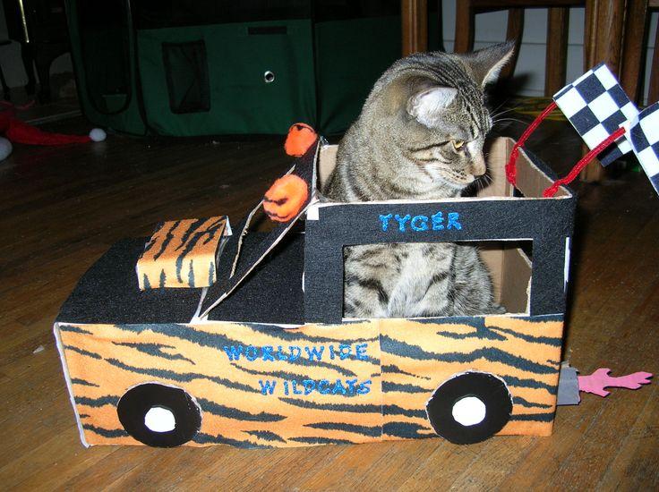 Tygers tiger-rific Cardwood Derby entry #cardwoodderby