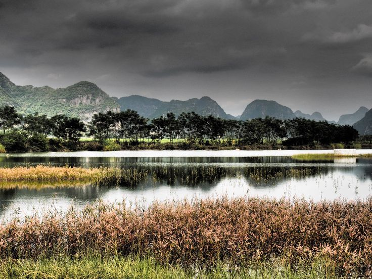 Maotang Wetland Park, located in Baiwei town, Shanglin county of Nanning.