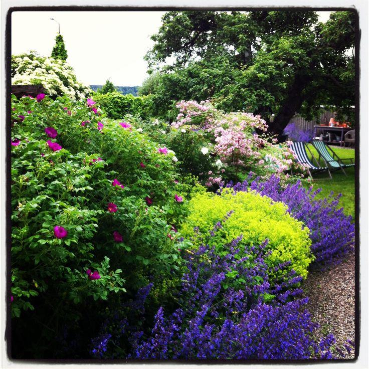 Summer in the garden. http://www.esny.se/sv/object/view/strandvagen-17---djurgardsgatan-7-mariefred--425855