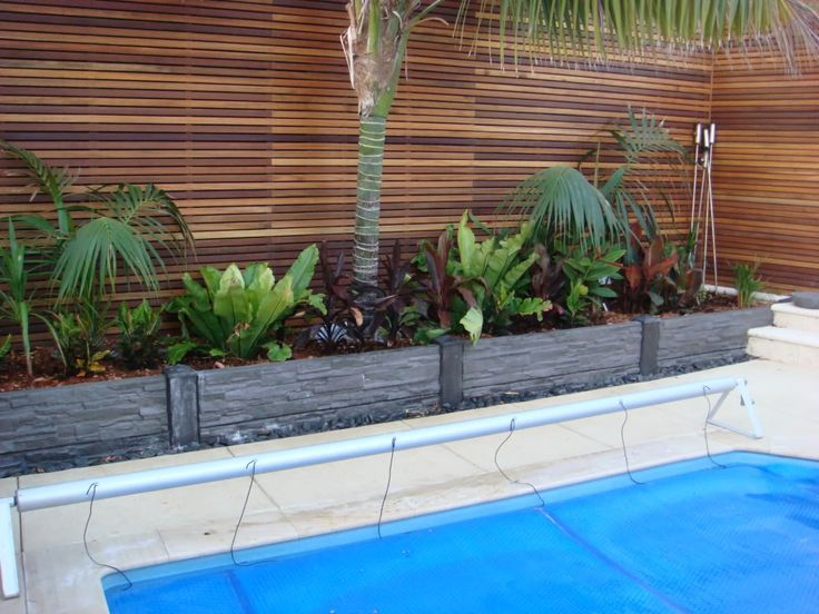 Able To Show Rocks Tropical Landscaping Pool