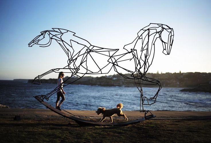 Een hond rent langs het beeld 'Which way forward?' van kunstenaar Harrie Fasher.
