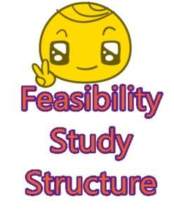 feasibility thesis outline How to perform a feasibility study for indoor and outdoor waterpark resorts 2 area, demographic, and neighborhood analysis the area, demographic, and neighborhood analysis evaluates the local economy.