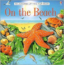 On the Beach (Usborne Lift-the-Flap Book): Alastair Smith, Laura Howell, Ian Jackson: 9780794502133: Amazon.com: Books