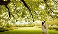 Kissing Tree wedding under a tree. Love both ideas.