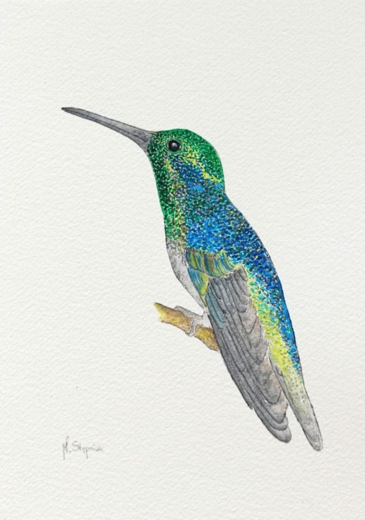 The Hummingbird, original watercolor painting  Please note that colors may be slightly different because of different display settings.  The item is packaged between pieces of sturdy cardboard ...
