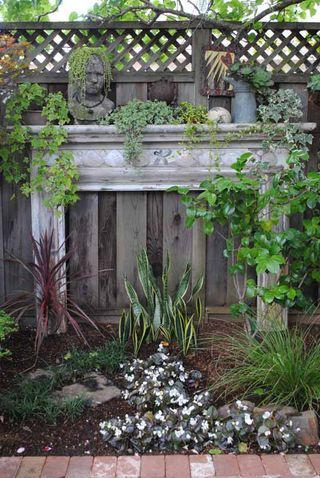 "From Rebecca Sweet's gorgeous garden. I love this idea, & look at Sanseveria ""flames""!"