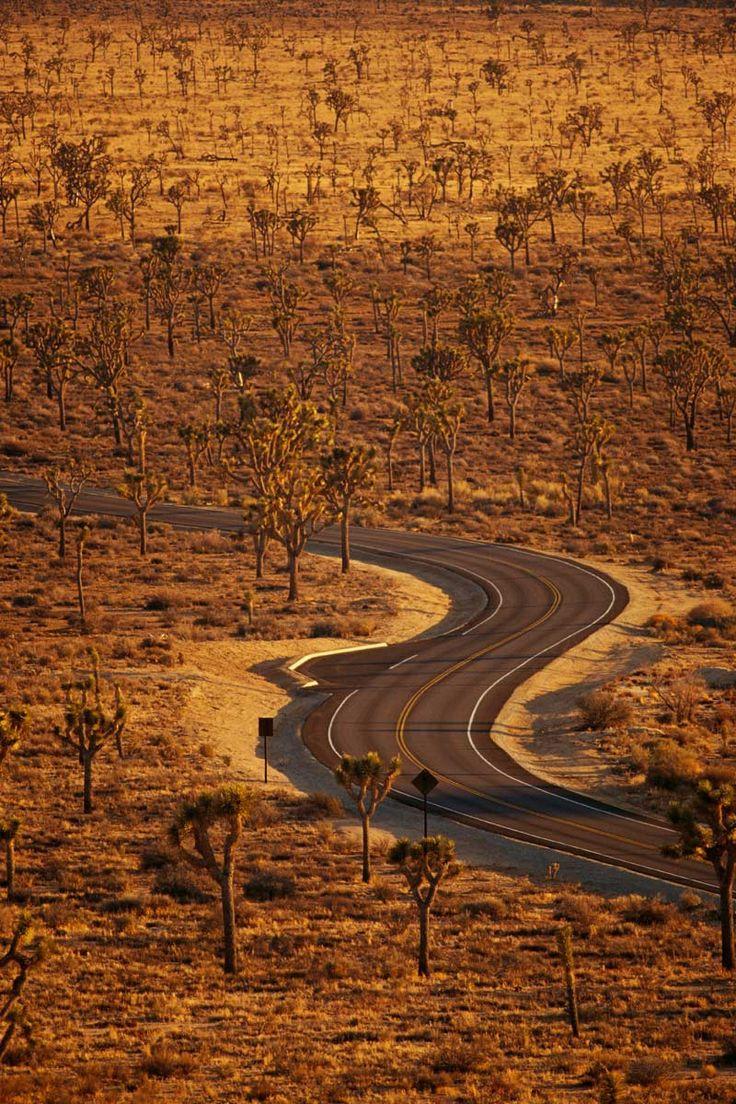 Desierto de Mojave Horrible, largo y caluroso desierto que hay que atravesar desde Los Ángeles a Las Vegas.