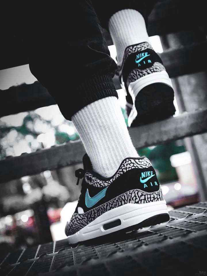 Atmos x Nike Air Max 1 Anniversary Elephant - 2017 (by maikelboeve ...