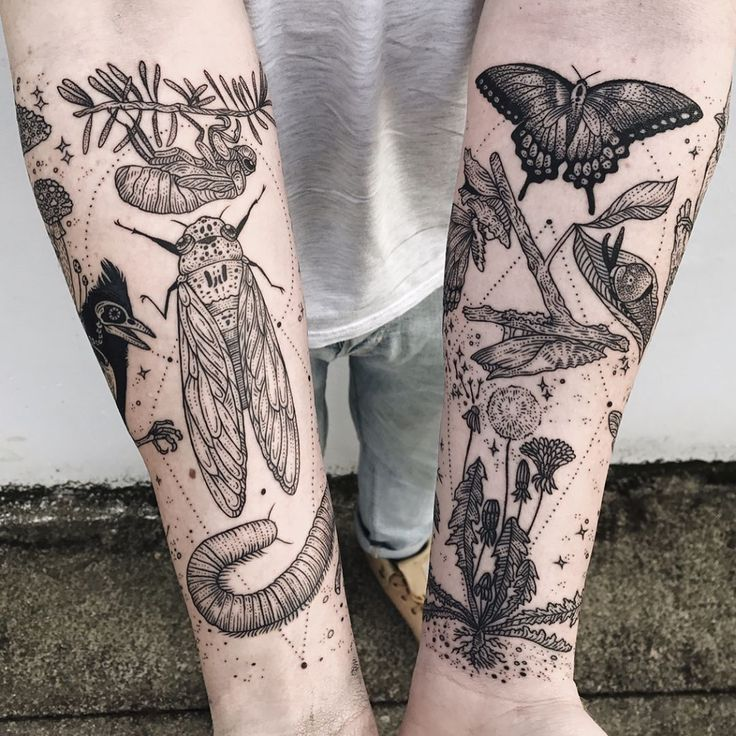 "15.4 mil Me gusta, 104 comentarios - Pony Reinhardt Tattoo (@freeorgy) en Instagram: ""Memory fragments - second arm featuring cicada, millipede, tufted titmouse skeleton, mushrooms,…"""