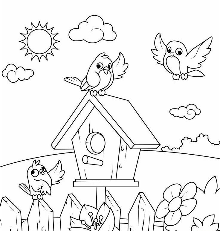 Jannatul Rawnak S Public Profile On Fiverr Bird Coloring Pages Spring Coloring Pages Free Coloring Pages