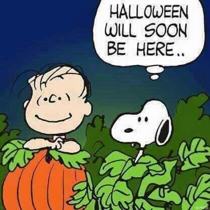 thepeanuts pnts schulz snoopy linus halloween peanuts - Charlie Brown Halloween Cartoon